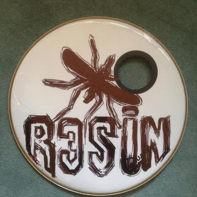 drum skin